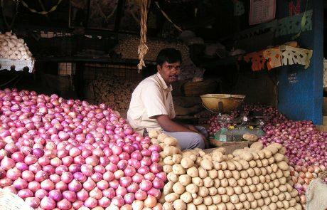 Crise de l'oignon en Inde